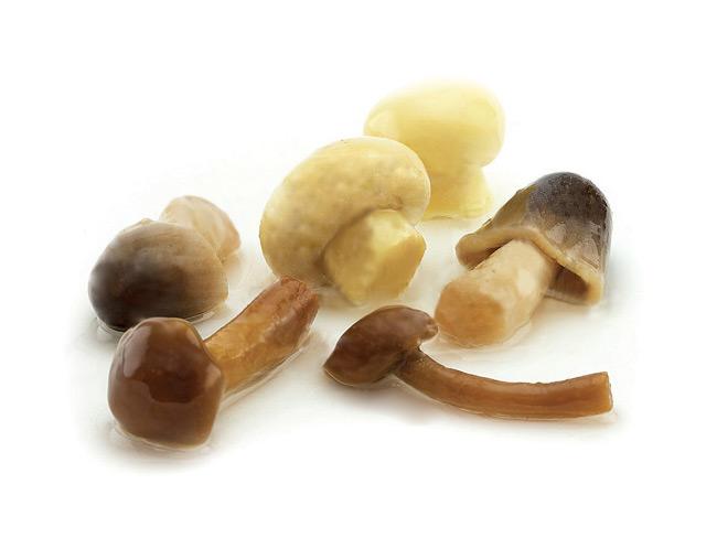 Tris di funghi in olio